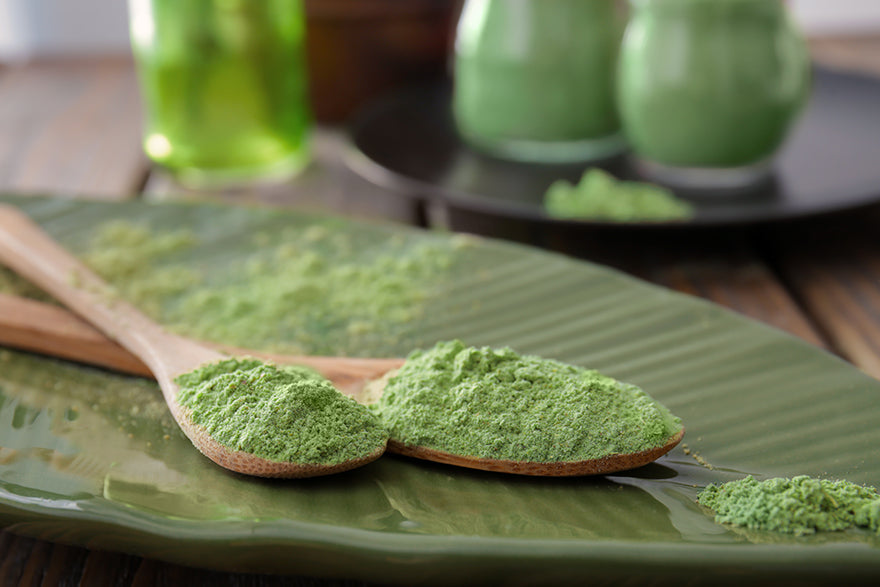 What is the Best Green Juice Superfood Powder