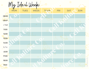 Digital 'Ideal Week' planner worksheet (STEM)