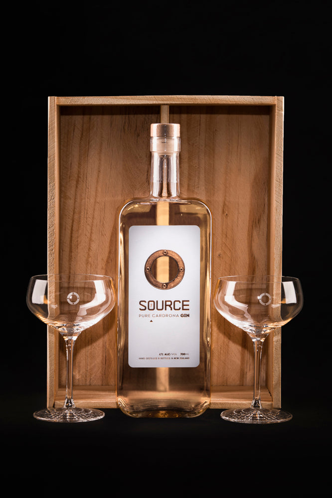 Source & Martini Glass Set