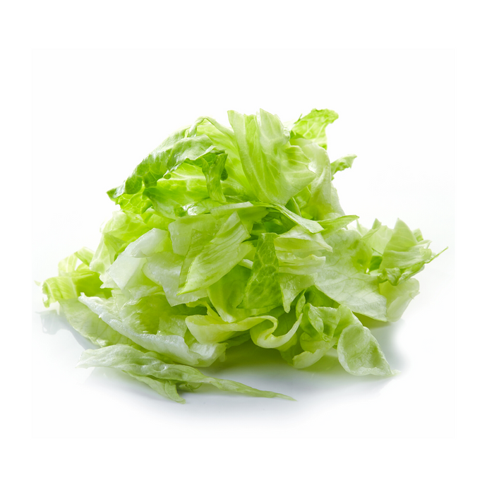 Sliced Shredded Lettuce