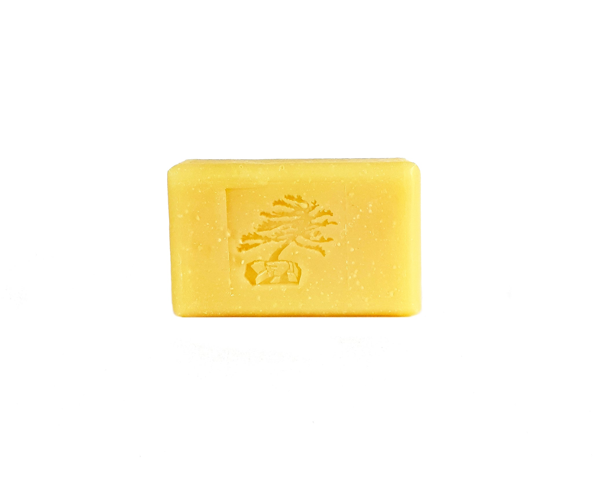 Coconut Milk Bar Soap - Soapstones Natural Skincare