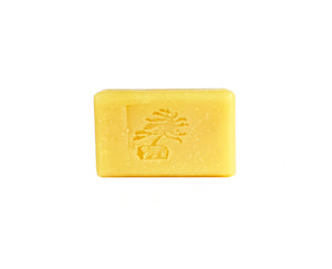 Coconut Milk Bar Soap