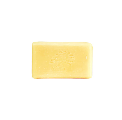 Enliven Bar Soap - Soapstones Natural Skincare