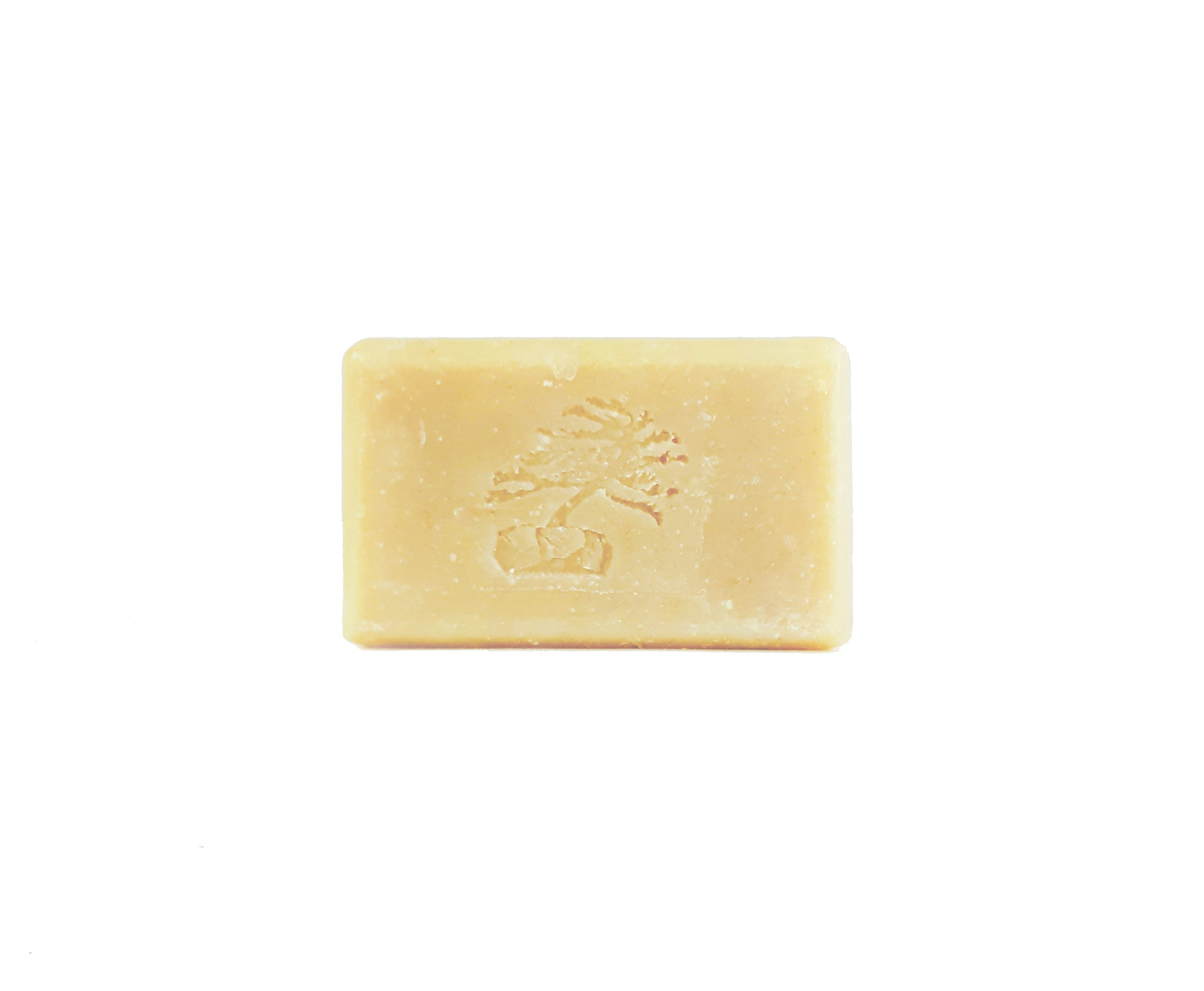 Rosemary Mint Shampoo Bar - Soapstones Natural Skincare