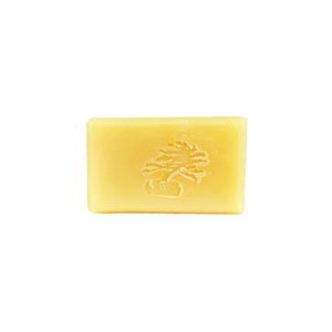 White Tea and Ginger Bar Soap