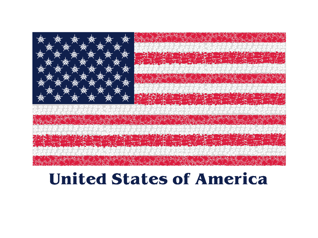 24 Value Pack American Flag Note Cards - Animal Track Designs