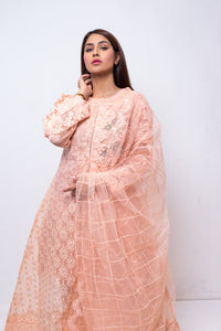 (SBK-12) Peach Colour Organza Suit Embroidered Ready to Wear 3Pcs Suit