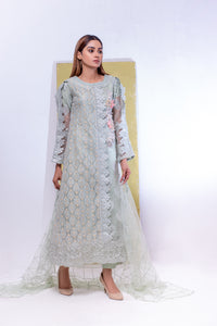 (SBK-14) Light Green Colour Organza Suit Embroidered Ready to Wear 3Pcs Suit