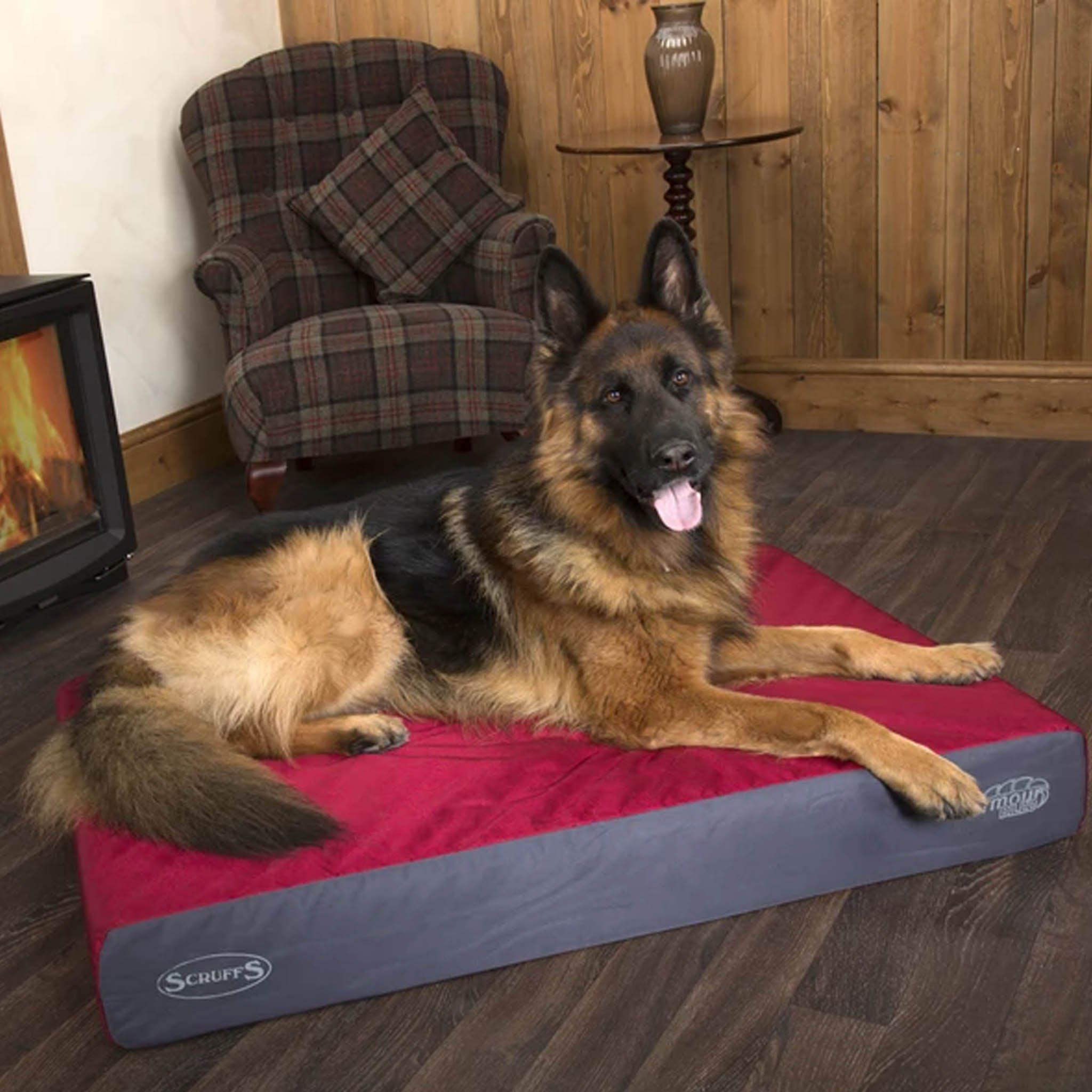 Scruffs ArmourDillo Robust Dog Bed - comfypet
