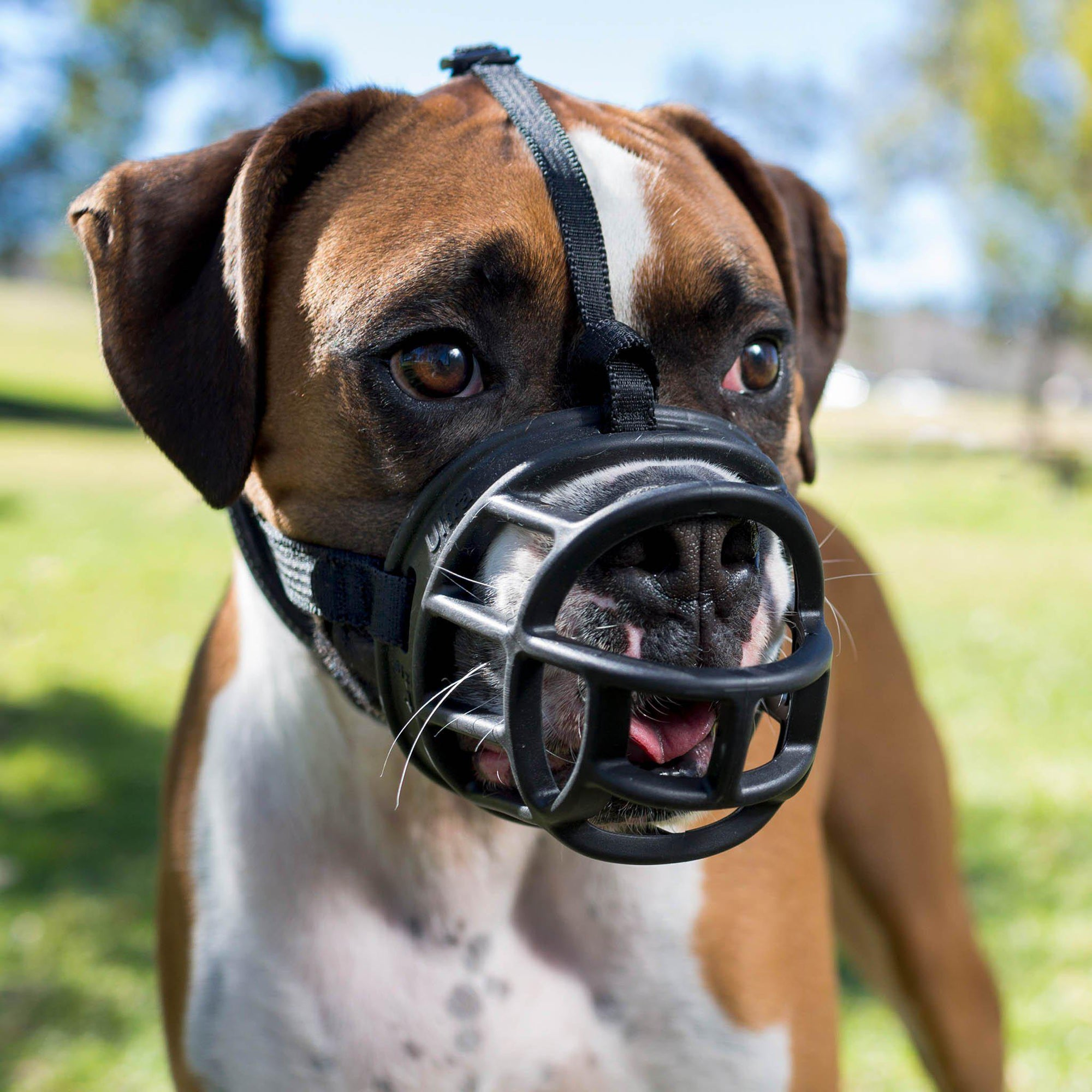 BASKERVILLE Ultra Muzzle - ComfyPet Products