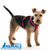 CLIX Comfy Harness - ComfyPet Products