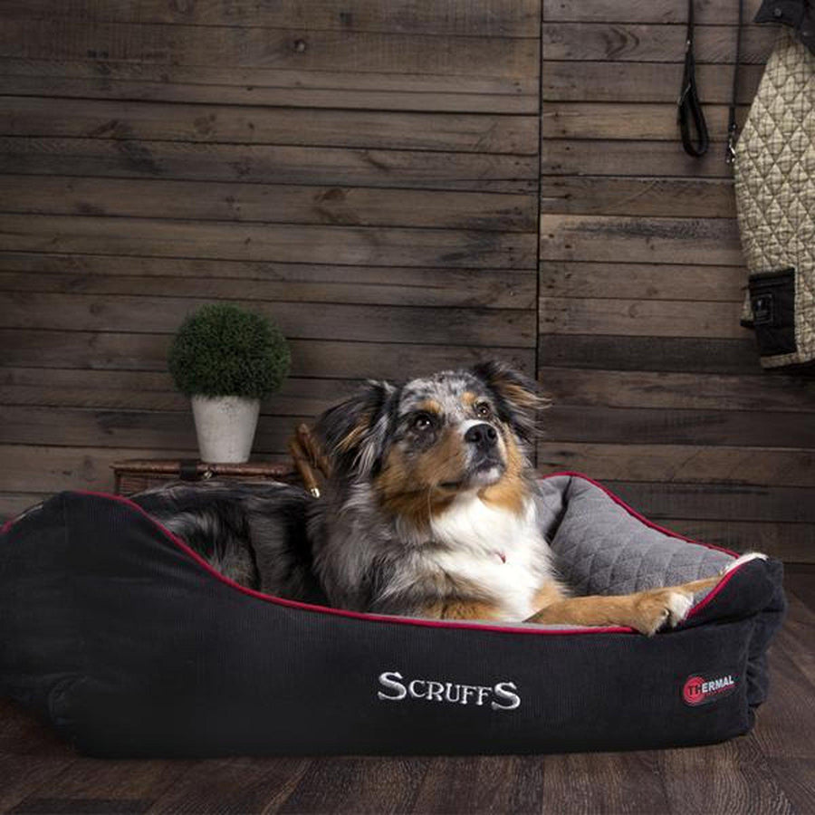 Scruffs Thermal Box Bed - comfypet