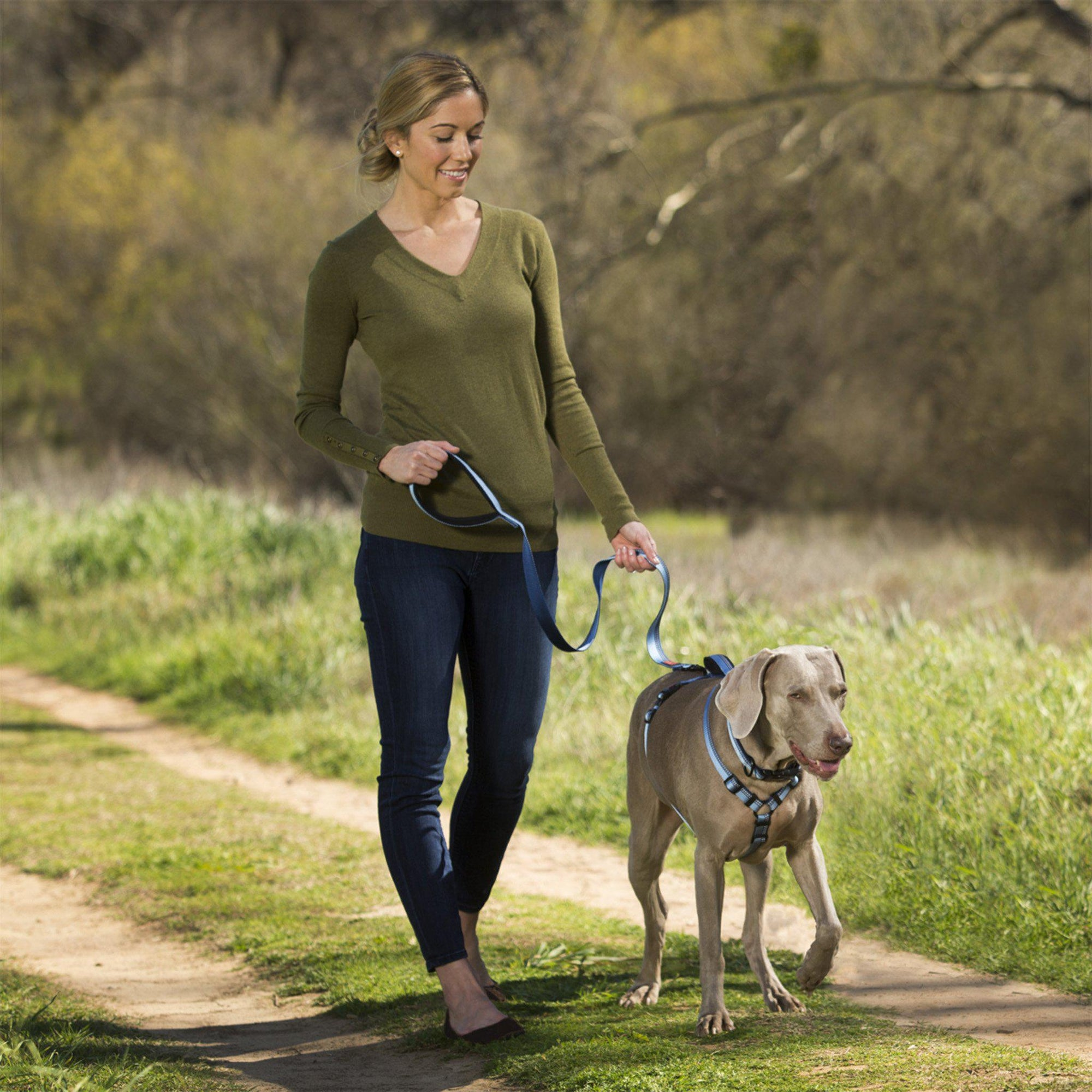 HALTI Walking Harness - ComfyPet Products