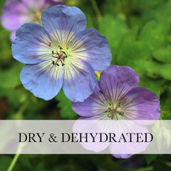 dry & dehydrated