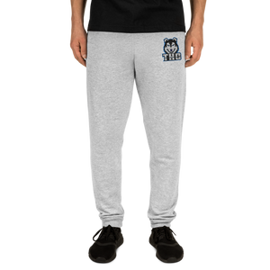 Blue Stitched Joggers