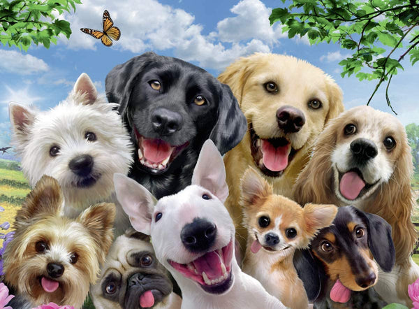 Delighted Dogs 300 pc Jigsaw Puzzle