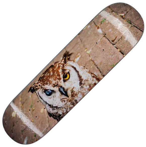 Fucking Awesome Owl Photo Jason Dill deck (8.38