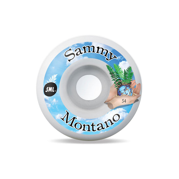 Sml. Wheels Sammy Montano Tide Pools (99a, 54mm)