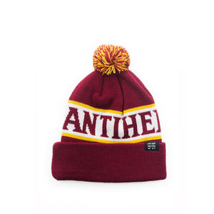 Anti Hero Florf Pom Beanie