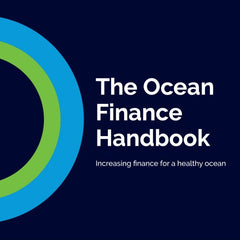 Increasing finance for a healthy ocean