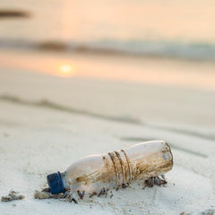 Meet the next generation turning the tide on plastic pollution