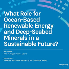 What Role for Ocean-Based Renewable Energy and Deep-Seabed Minerals in a Sustainable Future?