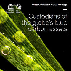 UNESCO Marine World Heritage: Custodians of the globe's blue carbon assets
