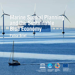 Marine Spatial Planning and the Sustainable Blue Economy