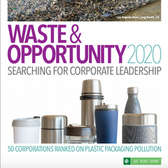 Waste and  Opportunity 2020: Searching for corporate leadership