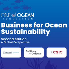 Business for Ocean Sustainability
