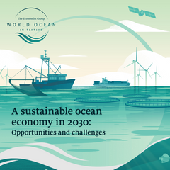 A sustainable ocean economy in 2030: Opportunities and challenges