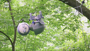 Meet the 'SlothBot,' the robot taking its sweet time to monitor our climate
