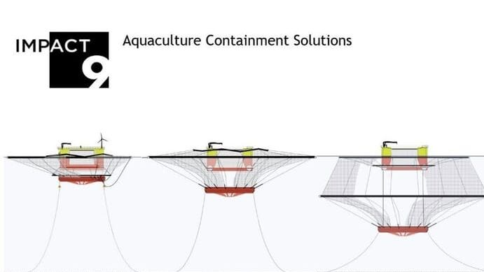 Novel offshore fish farm edges closer to commercial reality