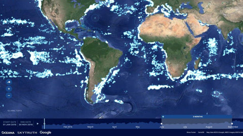 Global Fishing Watch - sustainability via transparency