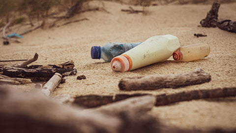 App predicts where plastic waste will collect
