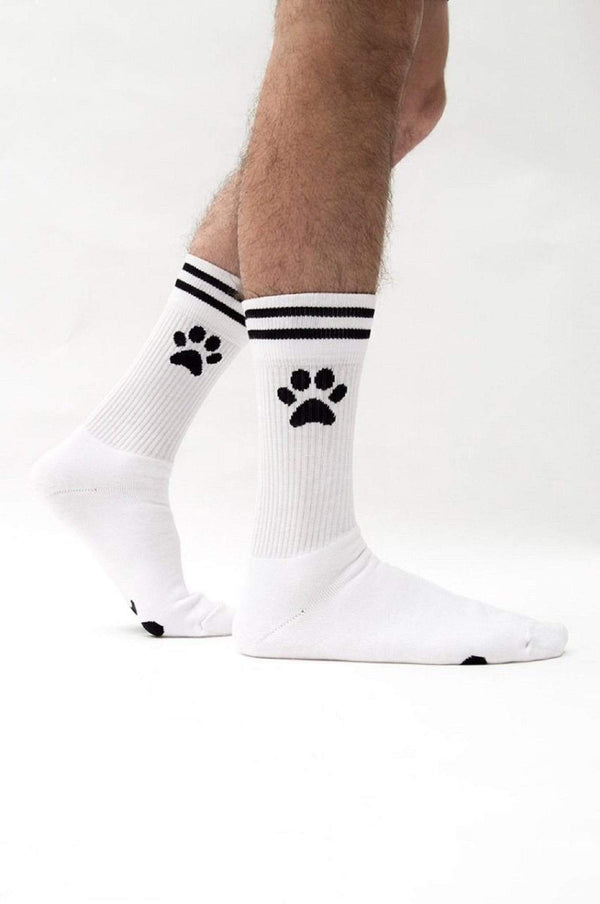 Sk8erboy PUPPY Socks - powered by Toy for a boy