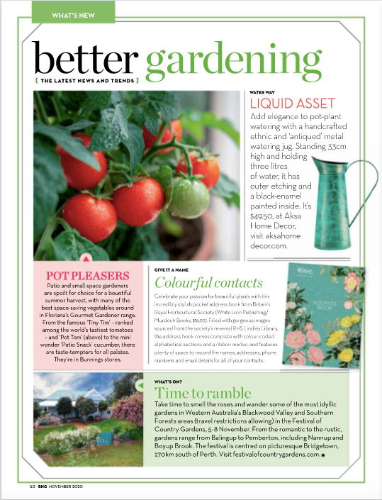 Green Watering Can/Jug - Copper in Better Homes & Garden Nov 2020 Issue