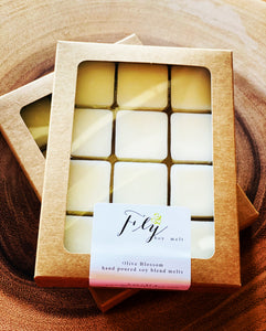 FLY BOY | 12 BLOSSOM MELTS IN KRAFT BOX