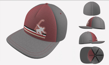 Load image into Gallery viewer, BLPA Celly Hats