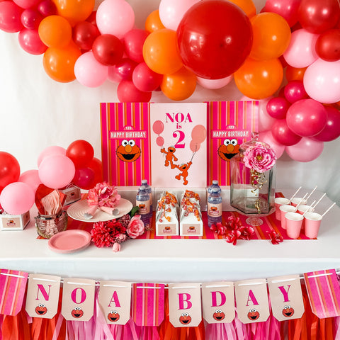 ELMO GIRLY GIRL BIRTHDAY DESSERT & DRINK STATION BOX