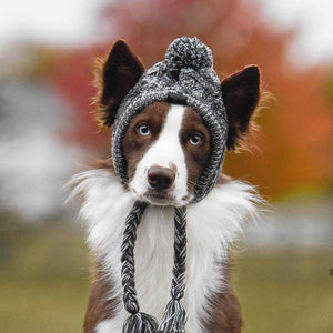 Cute Winter Dog Hats - Warm and Windproof