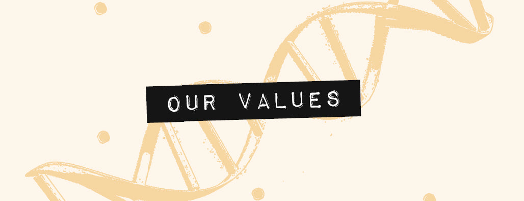 Our Culture - Values