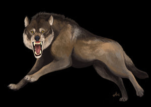 Scaled Skull - <i>Canis diris</i>, the Dire Wolf