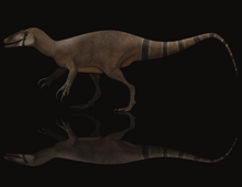 Load image into Gallery viewer, <i>Megaraptor</i> has a new cousin!  New, unnamed megaraptorid exclusive!