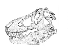 Load image into Gallery viewer, Drawing of Tyrannosaurus rex skull in side view