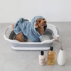 Foldable pet bath
