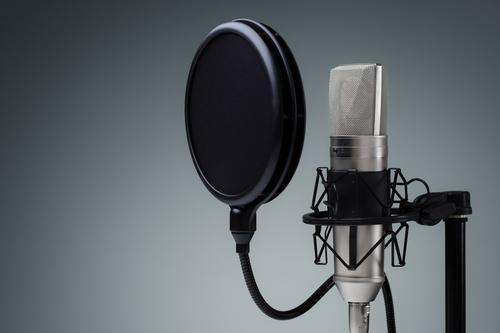 ONLINE - Voice Over Casting Director Workshop (Starting 8/10)