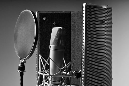 MARCH ONLINE - Voice Over LEVEL 2 (Starting 3/11)