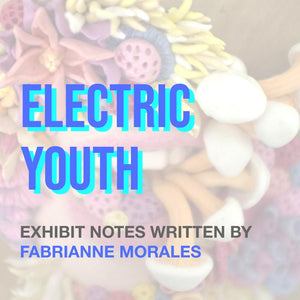 Electric Youth: Curator's Notes
