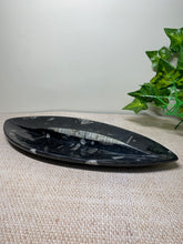 Load image into Gallery viewer, Fossil Orthoceras bowl - home decor
